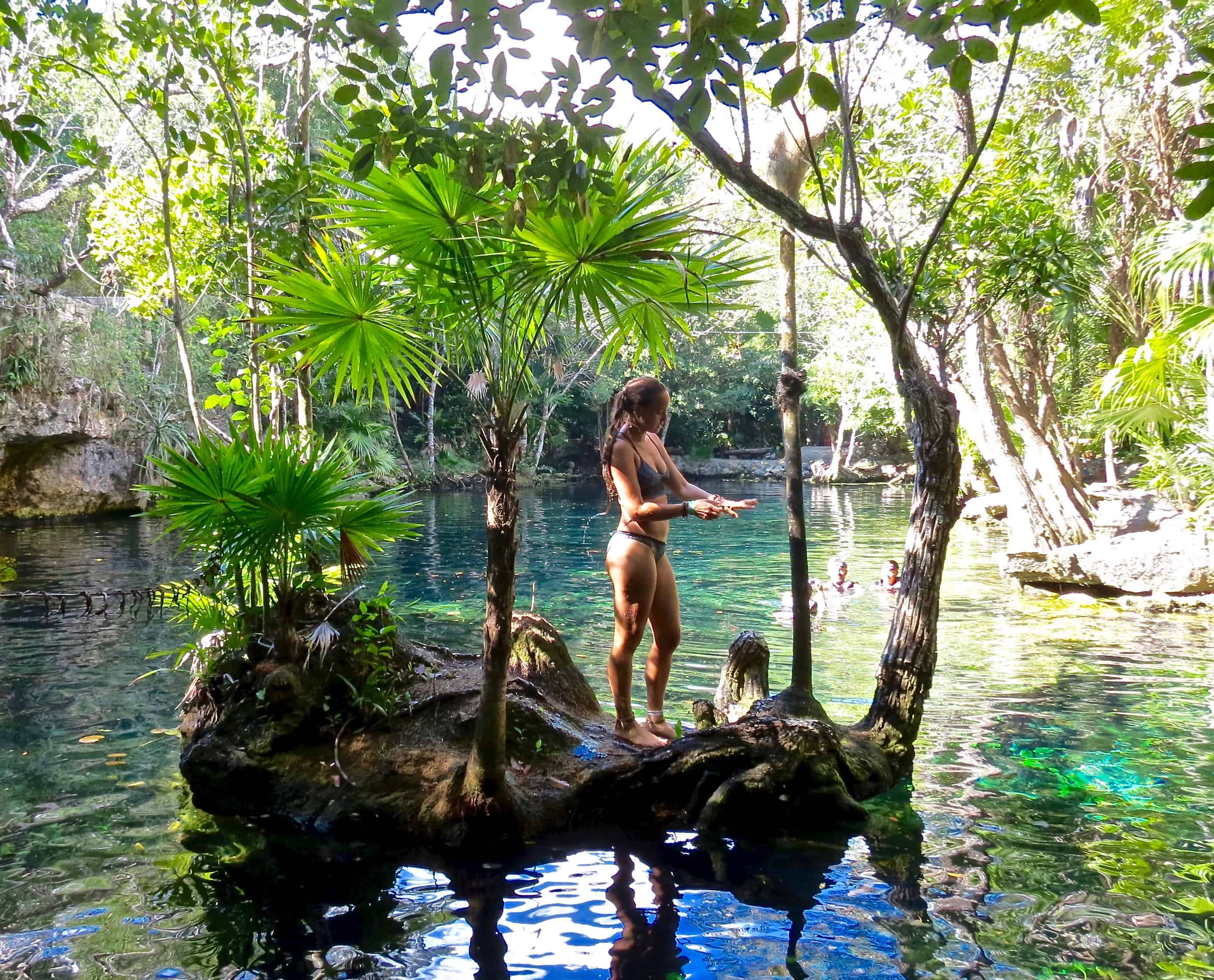 7 Best Cenotes Near Playa Del Carmen To Visit Walkaboot Travel